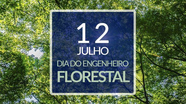 12 de julho – Dia do Engenheiro Florestal